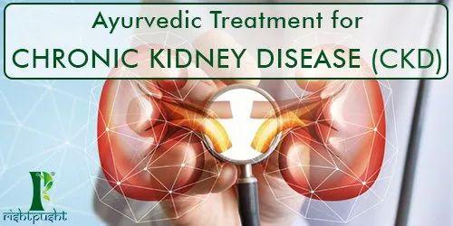 Best Ayurvedic Treatment Chronic Kidney Disease Ckd In New Delhi N D Care Nirogam Pvt Ltd Id 22150079073