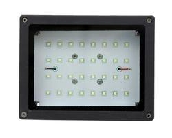 12 Watt DC Flood Light