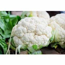 A Grade Fresh Cauliflower, Gunny Bag, 10 Kg