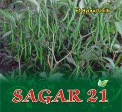Sagar 21 F-1 Hybrid Chilli Seed