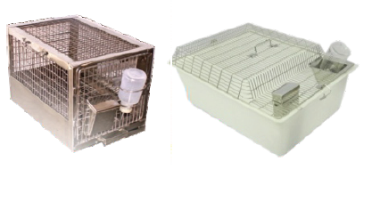 Laboratory Guinea Pig Cages