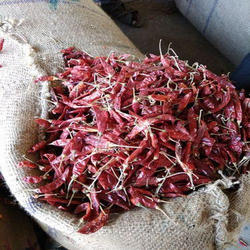Teja S17 Dry Red Chilli
