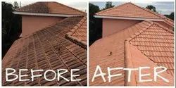Residential Terracotta Cleaning Service