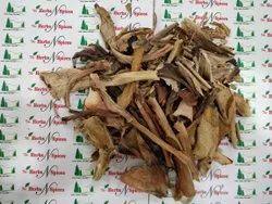 Aloe Vera Leaves Dry - Aloe barbadensis