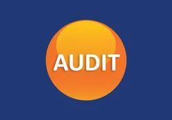 Reckitt Bencklser Group COC Audit Advisor Services