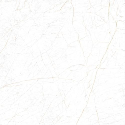 Maxim Designer Ceramic Tile, Size: 100 * 100 in cm