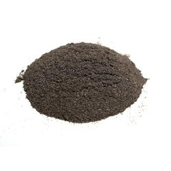 Jatamashi Extract Powder