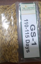 Gs 1 Paddy Seed