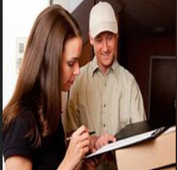 Domestic Cargo Courier Services