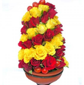 Tower Of Love Flowers