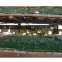 Netrika or Plastic Chandrika HDPE Seri Culture Net