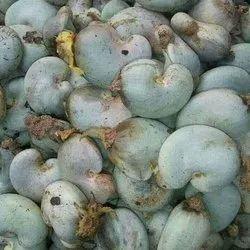 Common Raw Cashew Nut, Packaging Type: Sacks