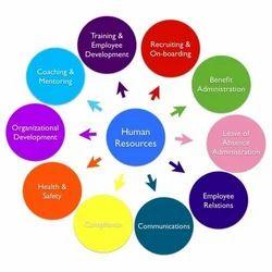 HR Policy Development Services