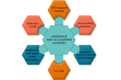 Assurance And Accounting Advisory Services