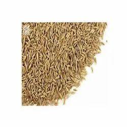 Cumin Seeds Spice