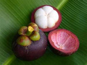 10:1 Dried Mangosteen Extract