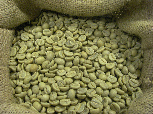 Unroasted Coffee Beans >> Arabica Green Coffee Beans Aaa