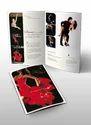 Brochures Designing