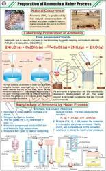 Prep. Of Ammonia & Haber Process For Chemistry Chart