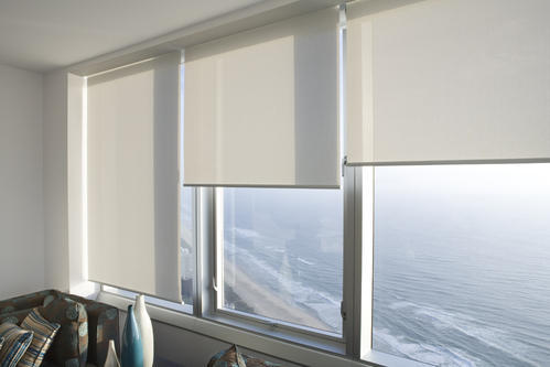 Roller Office Blinds Rs 90 Square Feet Dns Business