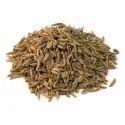 Caraway Seeds/ Jeera Holand