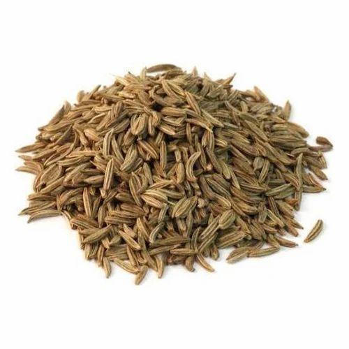 Caraway Seeds/ Jeera Holand, 50 Kg