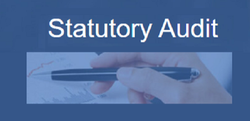 Statutory Auditing Services, Pan India