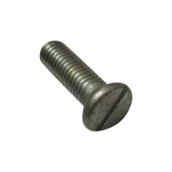 RS Mild Steel Screw