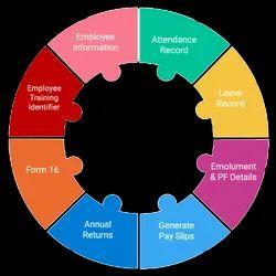 24 Hrs Online HRXpert Payroll Management System
