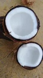 A Grade Pollachi Coconut, Packaging Size: 20 Kg, Coconut Size Available: Medium