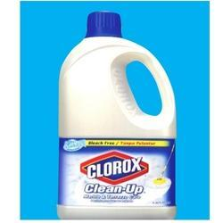Ccu 2 Ltr Clorox Floor Marble Terrazo Care Cleaner At Rs 650