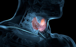 Kerala Ayurveda Thyroid Treatment