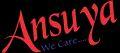 Ansuya Surgicals Limited