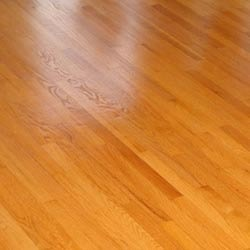 Action for Indoor Laminated Wooden Flooring Services