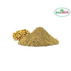 Organic Light Green Coriander Leaf Powder, Packaging Size: 20kg