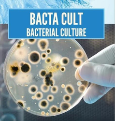 Special Bacteria In Waste Water Treatment