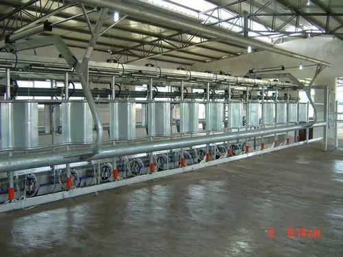 Ss Automation Herringbone Milking Parlour  Vansun