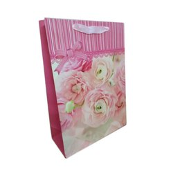 Gift Packing Paper Bag, For Gifting, Capacity: 2 Kg