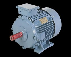BCH Electric Three Phase Motors, Power: >300 KW, for Industrial