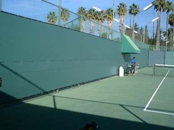 Tennis Screen Non Tearing