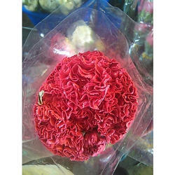 Super Carnation Natural Flower, Packaging Size: 20 Pieces