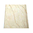 DB-434 Golden Series PVC Panel