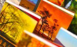 Books & Magazine Printing Services