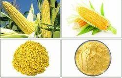 A Grade Freeze Dried Sweet Corn
