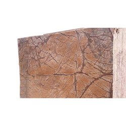 Rainforest Brown Marble Slab