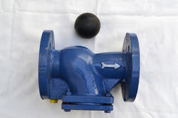 Ci Ball Type Non Return Valve