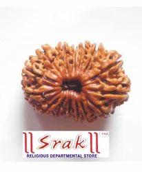 15 Mukhi Rudraksh Beads