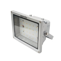 Flood Light (MF FL LED 401 (EC))