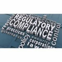 Consulting Firm Private Limited Regulatory Compliance Service