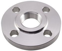 SS Customized Flange